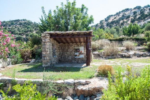 Ботанический сад у купальни Афродиты