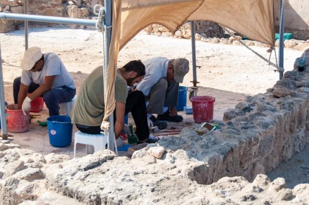 Археологические работы в парке