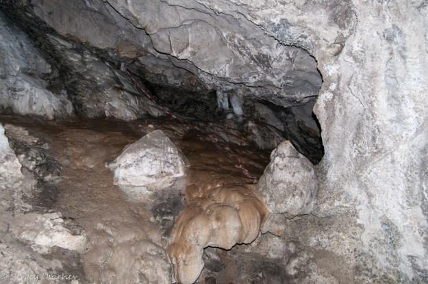 В Каповой пещере (Шульган-Таш)