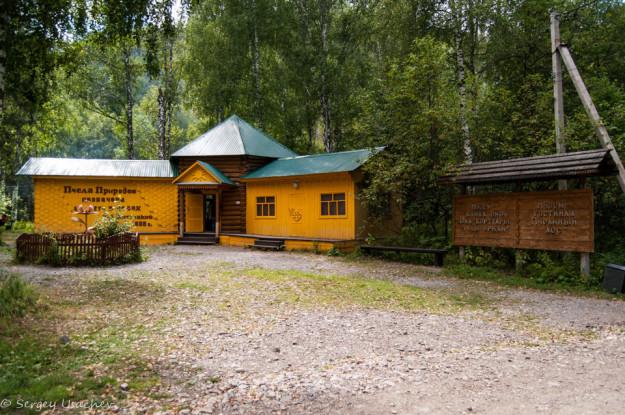 Музей бортевой пчелы в заповеднике Шульган-Таш