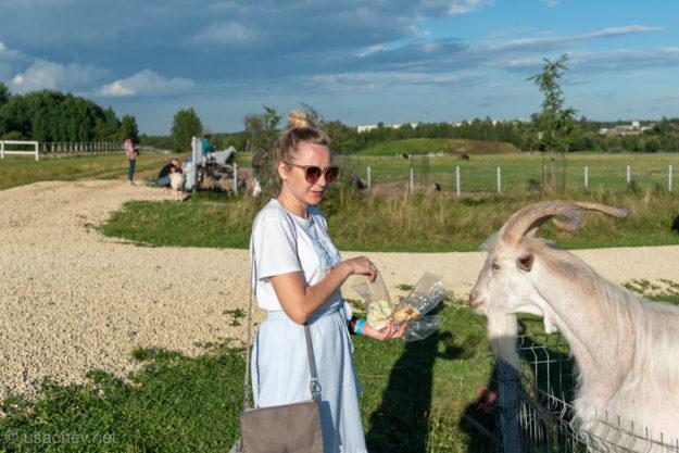 На ферме усадьбы Марьино