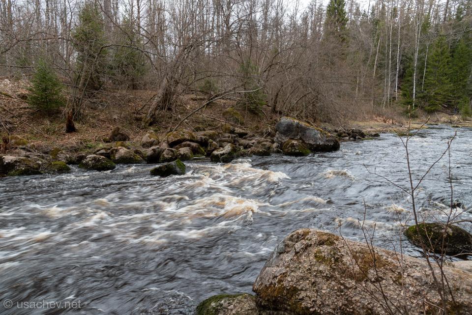 Бурная река Рощинка весной