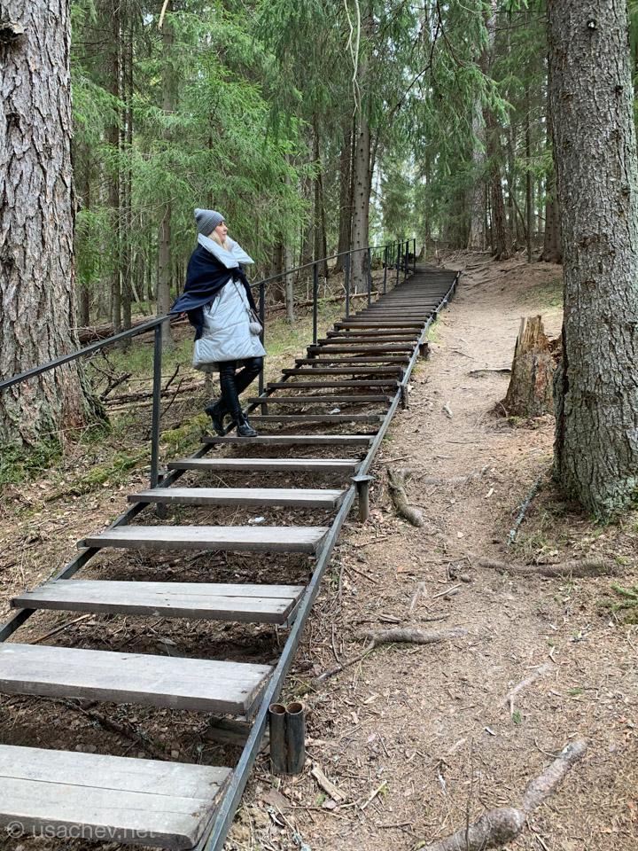 Оборудованная лестница для безопасных прогулок