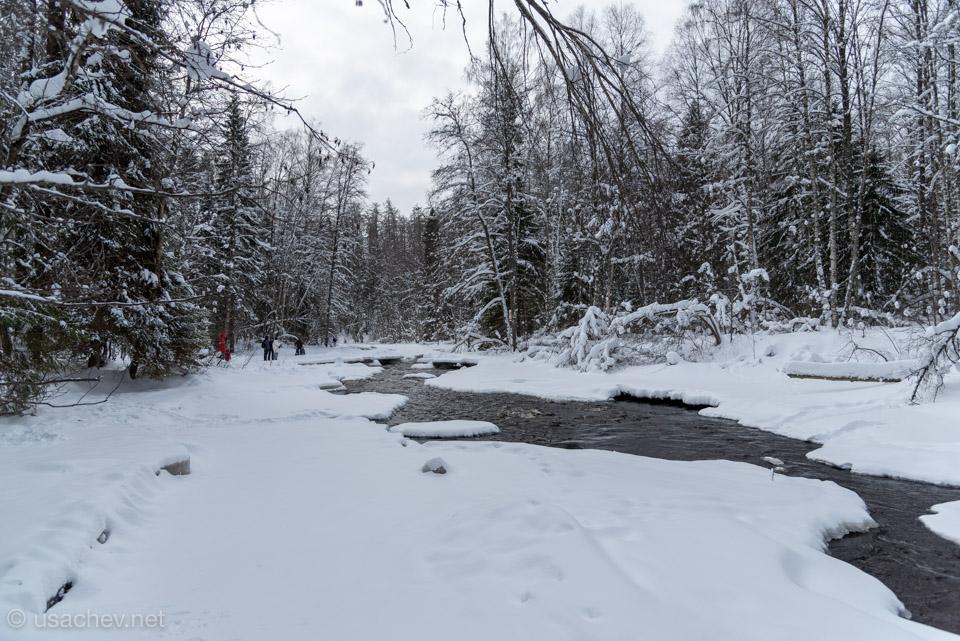 Река Рощинка зимой