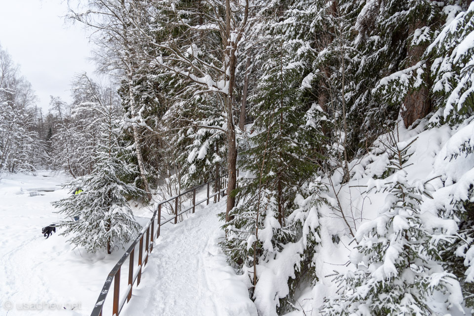 Лестница в Линдуловской роще зимой
